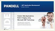 Download the Pandell Application Development Brochure
